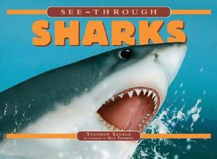 See-Through Sharks Steven Parker