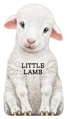 Little Lamb Barrons Book Notes
