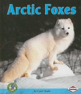 Arctic Foxes Carri Stuhr