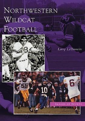 Northwestern Wildcat Football, Illinois  by  Larry LaTourette
