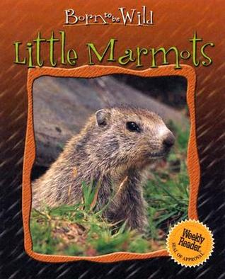 Little Marmots  by  Anne Royer