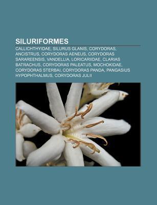 Siluriformes: Callichthyidae, Silurus Glanis, Corydoras, Ancistrus, Corydoras Aeneus, Corydoras Sarareensis, Vandellia, Loricariidae  by  Source Wikipedia