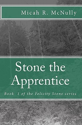 Stone the Apprentice: Book 1 of the Felicity Stone Series Micah R. McNully