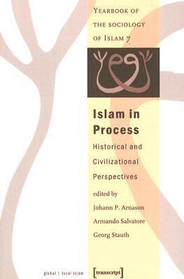 Islam in Process: Historical and Civilizational Perspectives  by  Jóhann P. Árnason