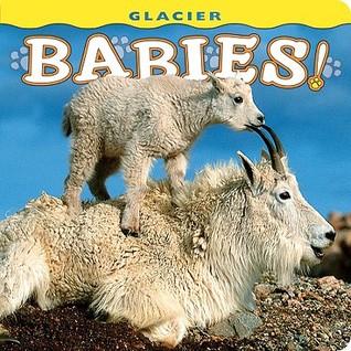 Glacier Babies! Wendy Shattil