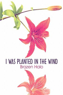I Was Planted in the Wind Brazen Halo