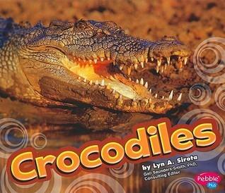Crocodiles  by  Lyn Sirota