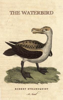 The Waterbird Robert Strandquist