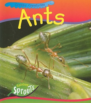 Ants  by  Sue Barraclough
