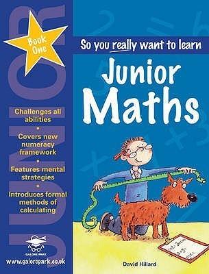 Junior Maths Book 1 David Hilliard