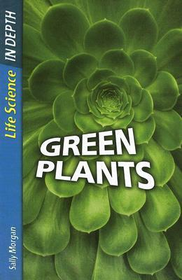 Green Plants  by  Sally   Morgan
