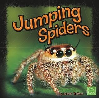 Jumping Spiders Joanne Mattern