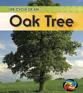 Oak Tree Angela Royston