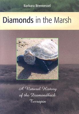 Diamonds in the Marsh: A Natural History of the Diamondback Terrapin  by  Barbara Brennessel