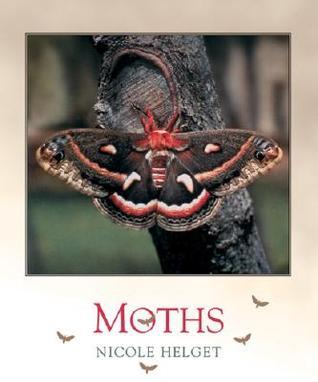 Moths Nicole Helget