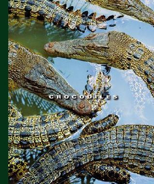 Crocodiles  by  Sophie Lockwood
