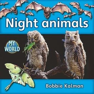 Night Animals Bobbie Kalman