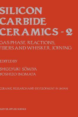 Advanced Ceramics: Volume 3 (Advanced Ceramics Series) (V. 3)  by  Shigeyuki Somiya