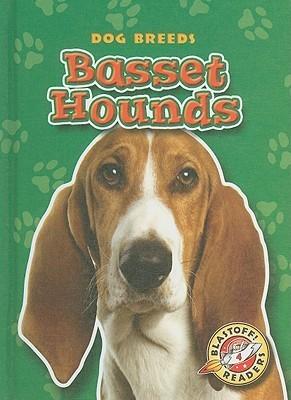 Basset Hounds Sara Green