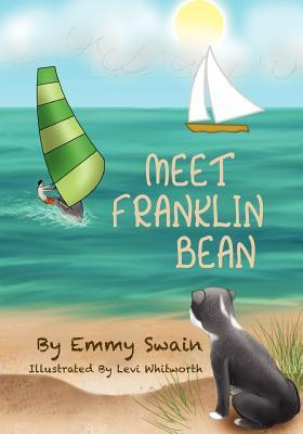 Franklin Bean Secrets of the Bay (Franklin Bean Superhero Series Book 2)  by  Emmy Swain