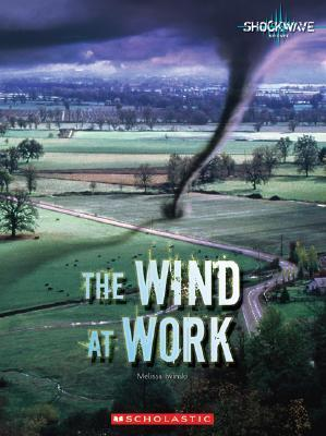 The Wind at Work  by  Melissa Iwinski