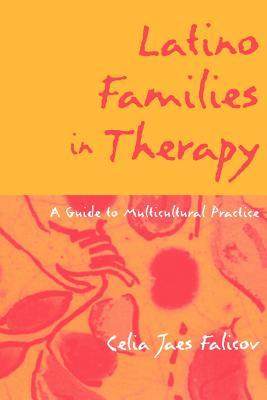 Family Transitions: Continuity and Change Over the Life Cycle  by  Celia Jaes Falicov