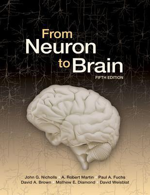 From Neuron to Brain, Fifth Edition  by  John G. Nicholls