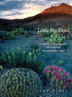 Little Big Bend: Common, Uncommon, and Rare Plants of Big Bend National Park (Grover E. Murrray Studies in the American Southwest) Roy Morey