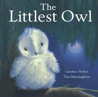 Littlest Owl  by  Caroline Pitcher