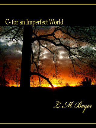 C- for an Imperfect World L.M. Beyer