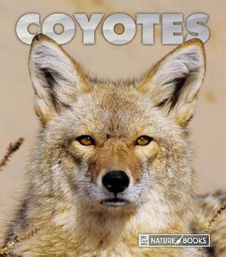 Coyotes  by  Sandra      Lee