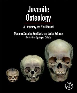 Developmental Juvenile Osteology  by  Louise Scheuer