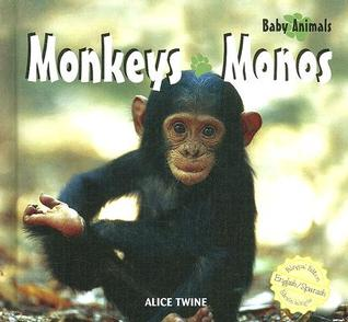 Monkeys/Monos  by  Alice Twine