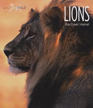 Lions Rachael Hanel