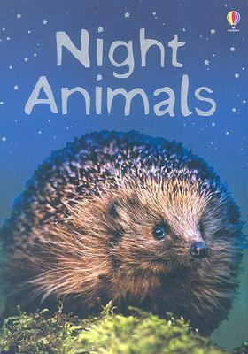 Night Animals: Level 1  by  Sue Meredith