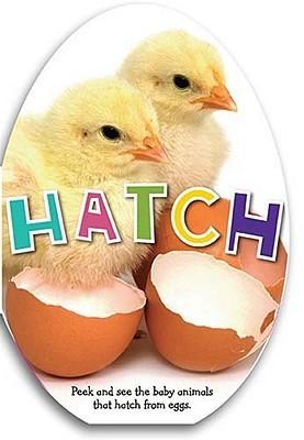 Hatch Katie Cox