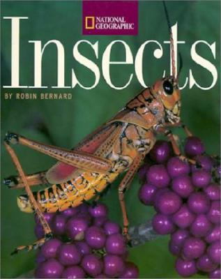 Insects  by  Robin Bernard