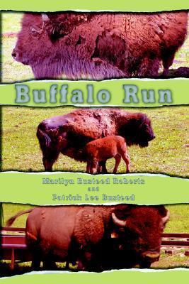 Buffalo Run  by  Marilyn Busteed Roberts
