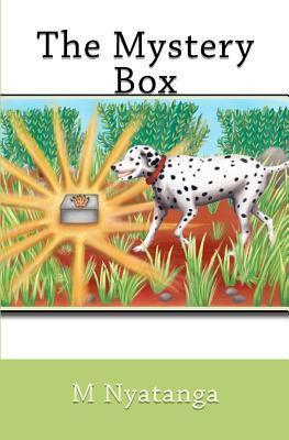 The Mystery Box M.N. Nyatanga