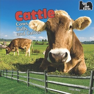 Cattle: Cows, Bulls, And Calves  by  Lorijo Metz