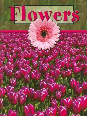Flowers  by  Lynn M. Stone