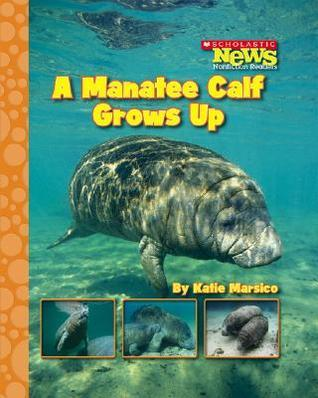A Manatee Calf Grows Up  by  Katie Marsico