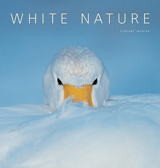 White Nature  by  Vincent Munier