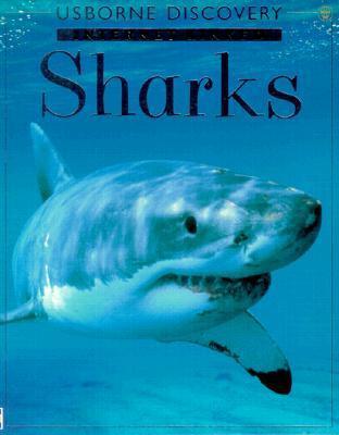 Sharks Jonathan Miller