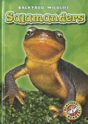 Salamanders (Blastoff! Readers: Backyard Wildlife) (Blastoff Readers. Level 1) Megan Borgert-Spaniol