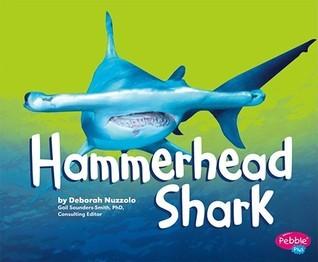 Hammerhead Shark Deborah Nuzzolo