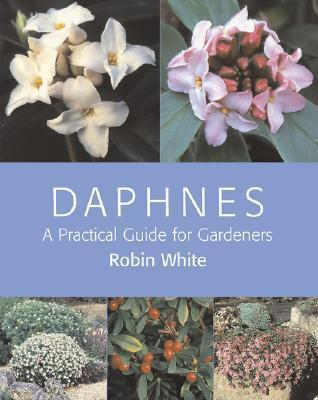 Daphnes: A Practical Guide for Gardeners  by  Robin White