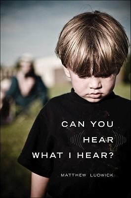 Can You Hear What I Hear? Matthew Ludwick