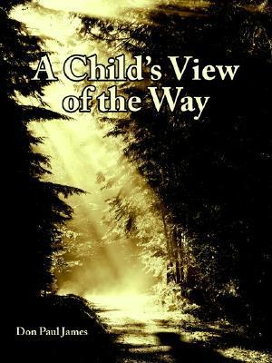 A Childs View of the Way  by  Don Paul James