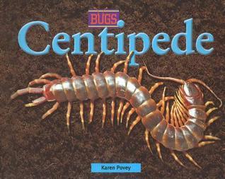 Centidpede  by  Karen D. Povey